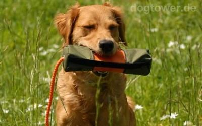 Hundedummy zum Befüllen