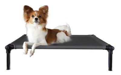 Starmark DogZone ProTraining Bett schwarz