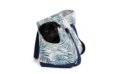 Sicherer Transport von kleinen Hunden und Welpen