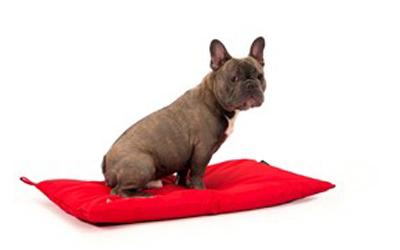 Für kleine und große Hunde nutzbar durch Größenvielfalt