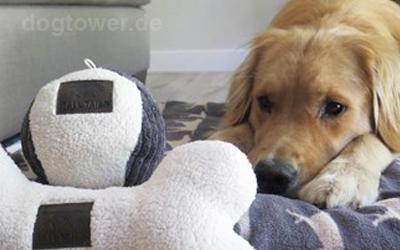 Hundeball erhältlich in 7,5cm und 15cm