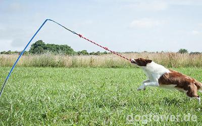 Stabile Reizangel für Hunde mit Körpergewicht von 6kg- 27kg >