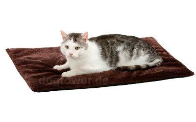 Liegedecke auch für Katzen geeignet