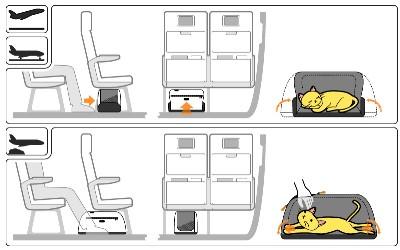 Sleepy Pod Nutzungsmöglichkeiten