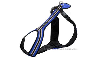 Weltmeisters Dogfood Dogsport Safety Führ- und Zuggeschirr, blau
