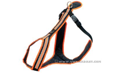 Weltmeisters Dogfood Dogsport Safety Führ- und Zuggeschirr, orange