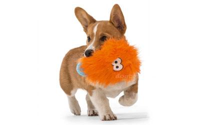 Rosebud Spielpartner für kleine und große Hunde