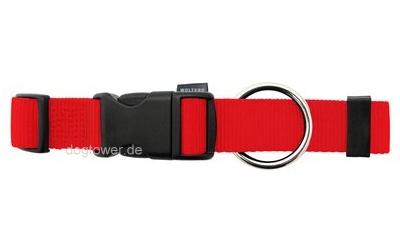 Hundehalsband Basic, Wolters, rot
