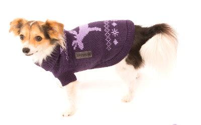 Hundepullover mit Bund, elastisch