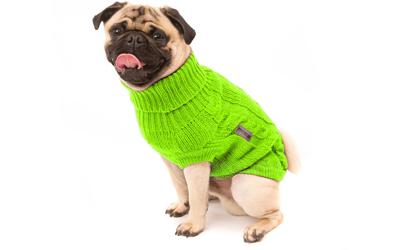 Wolters Hundepullover, auch in Mopsgrößen erhältlich