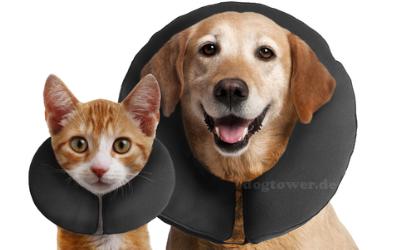Halskrause für Hunde und Katzen einsetzbar