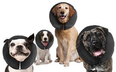 zenpet ProCollar Hunde Halskrause