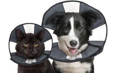 Für Hunde und Katzen verwendbar