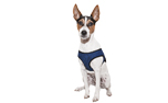 Aqua Coolkeeper Cooling Comfy Hundegeschirr, pacific blau