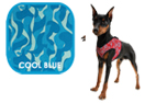 Aqua Coolkeeper Cooling Comfy Hundegeschirr, cool blau