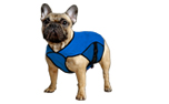 Aqua Coolkeeper Cooling Pet Jacket Kühljacke, pacific blau