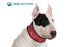 Aqua Coolkeeper Cooling Collar Hundehalsband, red western