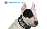 Aqua Coolkeeper Cooling Collar Hundehalsband, scottish grey