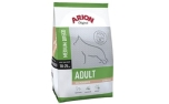 Arion Original Adult medium Salmon & Rice