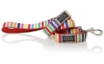Doog Lead Scooby multi-color striped
