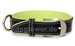 Wolters Cat and Dog Lederhalsband Terranova, schwarz/apfel