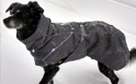 Hurtta Expedition Parka Hundemantel brombeere/blackberry