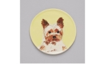 The Painters Wife Yorkshire Terrier Dish
