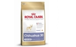 Royal Canin Chihuahua Junior