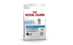 Royal Canin Trockenfutter Lifestyle Urban Life Junior Large Dog