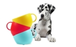 United Pets CUP Dog Bowl Yellow