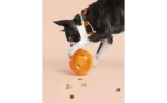 United Pets Tumbler Treat Puzzle Toy Orange