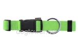 Hundehalsband Basic, Wolters, limette
