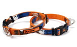 Xtremo Hundehalsband, orange