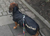 Back on Track Standard- Hundemantel Dackel, schwarz