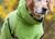 DRYUP cape Hundebademantel, edition kiwi