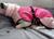 iqo Hundebademantel Pitschnass, pink/rosa