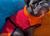 iqo Hundebademantel Pitschnass, rot/orange