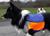 iqo Reflektor-Sicherheitsweste mit Mesh, neonorange/blau