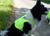 iqo Reflektor Sicherheitsweste (wärmend), neongelb