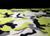 iqo Softshell Hundeoverall, camouflage gelb/schwarz/grau