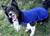 iqo Thermo-Fleece Hundepullover Comfy (inkl. Reflektoren), marineblau
