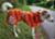 Hurtta Monsoon Hundemantel sanddorn/buckthorn