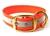 Mystique Halsband Biothane Deluxe (Messing), reflex-orange
