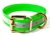 Mystique Hundehalsband Biothane (Messing), reflex-grün