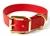 Mystique Hundehalsband Biothane (Messing), rot