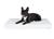 padsforall Hundematte Nuvola aus Kunstleder gesteppt, weiss