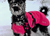 Pink Pepper Hundemantel IQO VXf